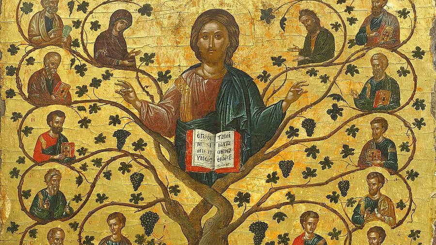 Minute Homily: I AM the Vine